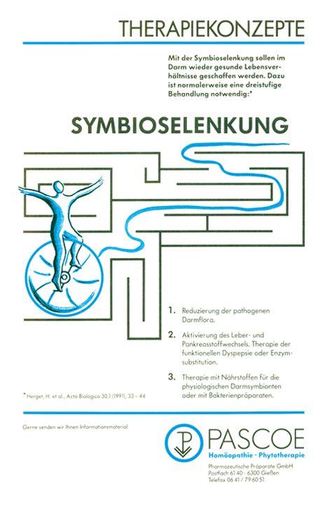 Historische Anzeige Symbioselenkung 1992