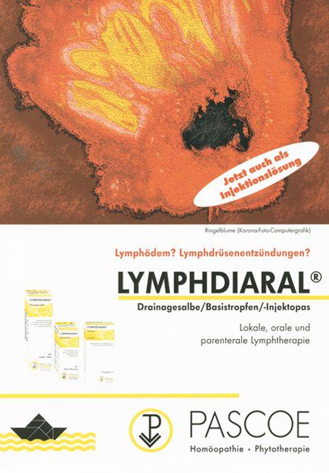 Historischer Fyler Lymphdiaral 1990